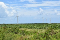 The large wind energy site in Santa Isabel survived Hurricane Maria without incident and is now providing reliable power back to the Puerto Rican grid