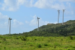 Many blades at the Punta Lima wind farm were completely destroyed